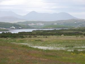 Ocean Villa Country Home, Bed and Breakfasts  Clifden - big - 5