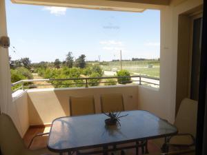 Apartment D104, Apartments  Mandria - big - 14