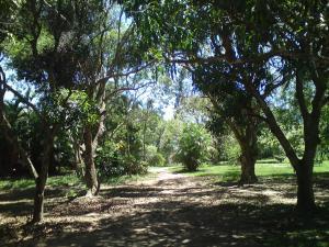 Sitio Recanto da Rasa, Magánszobák  Tamoios - big - 17