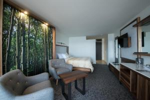 Superior Room with Balcony and River View