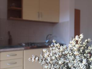 Sunny Rock Volme Apartments, Apartments  Banjole - big - 11