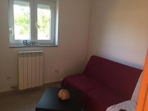 Sunny Rock Volme Apartments, Apartments  Banjole - big - 12