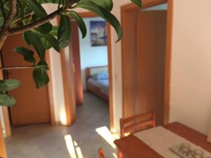 Sunny Rock Volme Apartments, Apartments  Banjole - big - 26