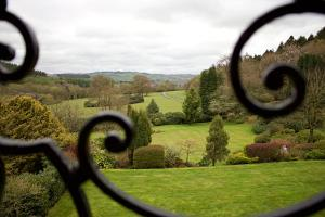 The Falcondale (3 of 56)