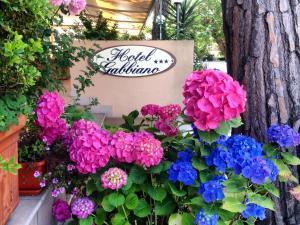 Hotel Gabbiano - AbcAlberghi.com