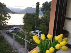 Apartments Vido, Appartamenti  Kotor - big - 35