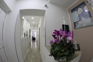 Ville Vesuviane, Bed and breakfasts  San Giorgio a Cremano - big - 13