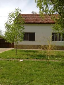 Guest House Zuzic, Guest houses  Zrenjanin - big - 17