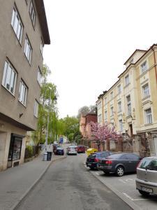 Old Town Apartment Pellicova