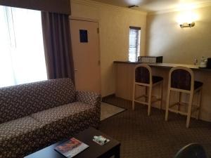 Suite - Disability Access