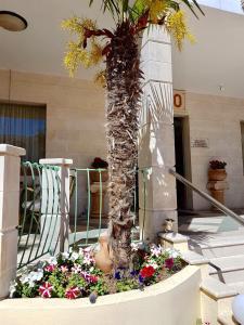 Bueno Hotel, Residence  Platanes - big - 24