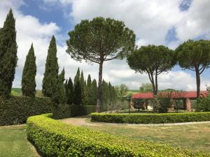 Podere Il Mulino, Bed and Breakfasts  Pieve di Santa Luce - big - 84