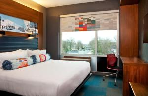 Savvy King Suite