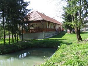 Öreg Bence Háza, Appartamenti  Füzérkomlós - big - 8