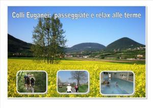 Hotel Terme Villa Piave, Hotely  Abano Terme - big - 42