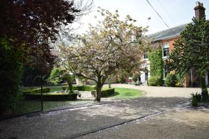 Glendower House BandB