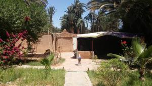 Camping Auberge Aain Nakhla, Ostelli  Guelmim - big - 46