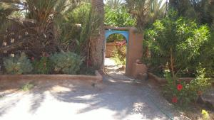 Camping Auberge Aain Nakhla, Ostelli  Guelmim - big - 44