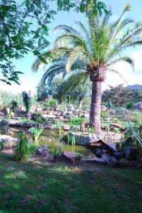 Hotel Punta Sur (38 of 39)