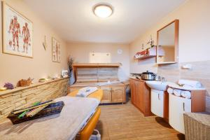 Wellness Apartmány Andrea, Apartments  Zdíkov - big - 36