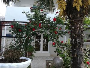 Guesthouse Villa Juric, Guest houses  Crikvenica - big - 6