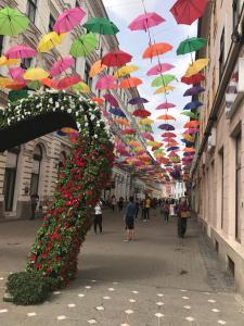 Timisoara Central Hostel, Hostely  Timişoara - big - 72