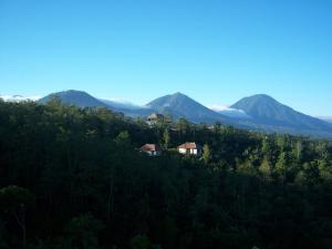 Munduk Moding Plantation (1 of 94)