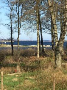 Havsstugan, Case vacanze  Pukavik - big - 2