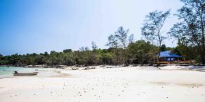 Nest Beach Club