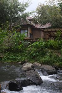 Mi Casa Ijen Guest House, Penzióny  Licin - big - 21