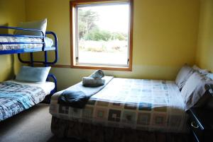 Surat Bay Lodge/Backpackers Hostel and Cottages, Ostelli  Owaka - big - 5