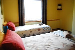 Surat Bay Lodge/Backpackers Hostel and Cottages, Ostelli  Owaka - big - 11