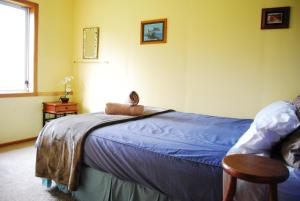 Surat Bay Lodge/Backpackers Hostel and Cottages, Ostelli  Owaka - big - 13