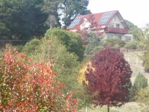 Abelia Cottages Of Daylesford Lakehigh, Dovolenkové domy  Daylesford - big - 6