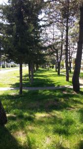 Apartment On Shota Rustaveli, Apartments  Batumi - big - 23