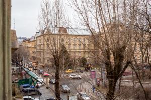 Avangard LChin*B Apartment, Апартаменты  Львов - big - 14