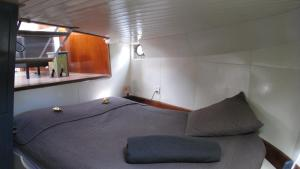 Houseboat Ms Luctor, Boote  Amsterdam - big - 2