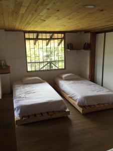 Pintos Hostal, Гостевые дома  Богота - big - 13