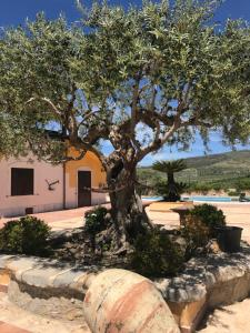 Agriturismo Tenuta San Giovanni Casale Leto, Farmy  Sant'Angelo Muxaro - big - 53