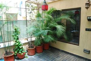 Ansh, Апартаменты  Нью-Дели - big - 8