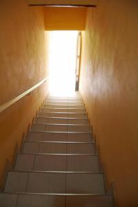 Complejo Cabañas Las Moras, Apartments  San Rafael - big - 43