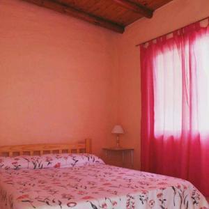 Complejo Cabañas Las Moras, Apartments  San Rafael - big - 38