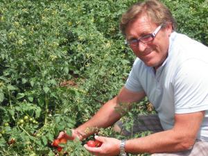 Azienda Agrituristica Baglio Carta, Farmy  Balestrate - big - 23