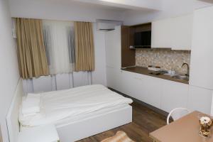 Studio, Appartamenti  Bucarest - big - 15