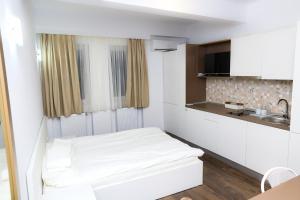 Studio, Appartamenti  Bucarest - big - 23