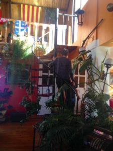 Churup Guest House, Penzióny  Huaraz - big - 47