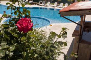 Gardenia Vacation Settlement, Apartmanhotelek  Szozopol - big - 15