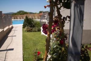 Gardenia Vacation Settlement, Apartmanhotelek  Szozopol - big - 31