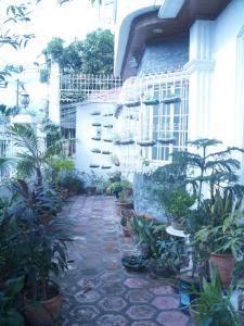 Geordie's Hostel and Cafe, Penziony  Manila - big - 18
