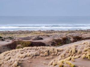Mendocino Dunes - Dune Flower, Dovolenkové domy  Fort Bragg - big - 38